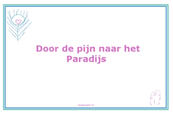 0208-pijnparadijs